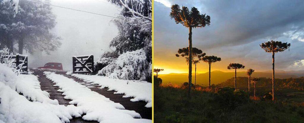 Rota do frio: São Joaquim (SC)